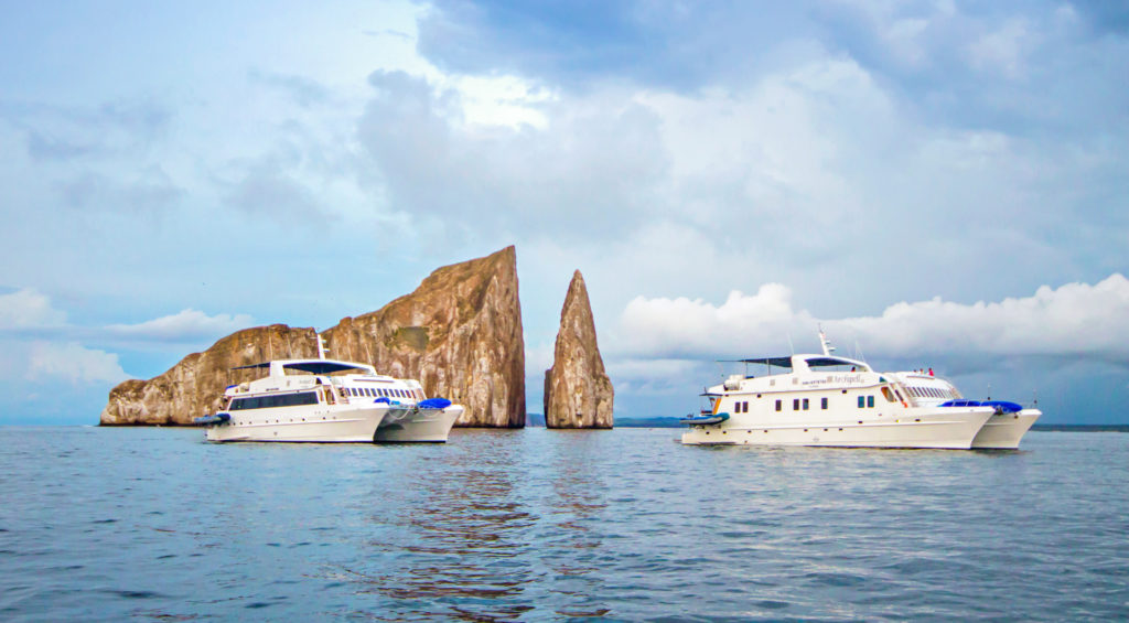 Great Last Minute Galapagos Cruises