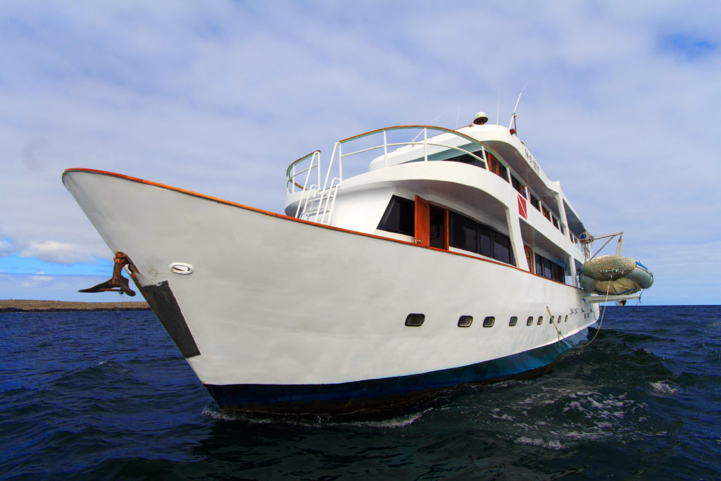 Aqua Best Galapagos Last Minute Deals