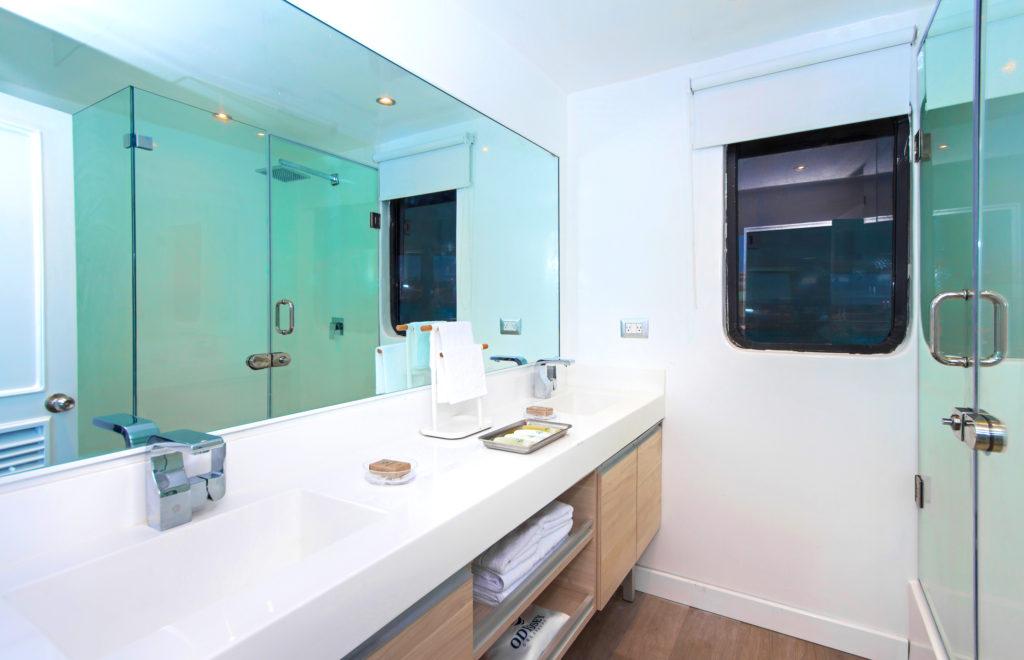 Odyssey_Suite_UpperDeck_Bathroom