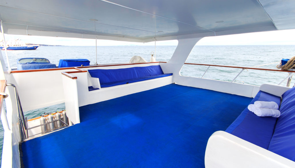 Upper deck – shaded resting area