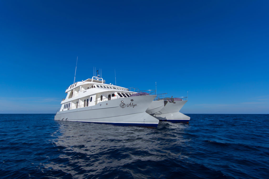 Alya Last Minute Galapagos Cruise Deals