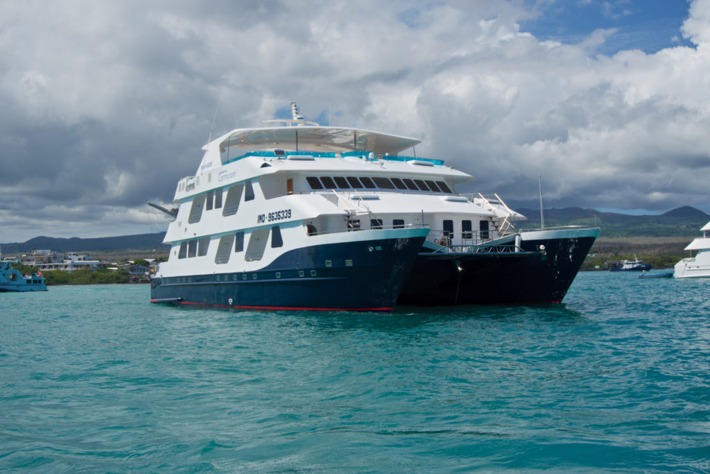 Luxury Cruise Galapagos