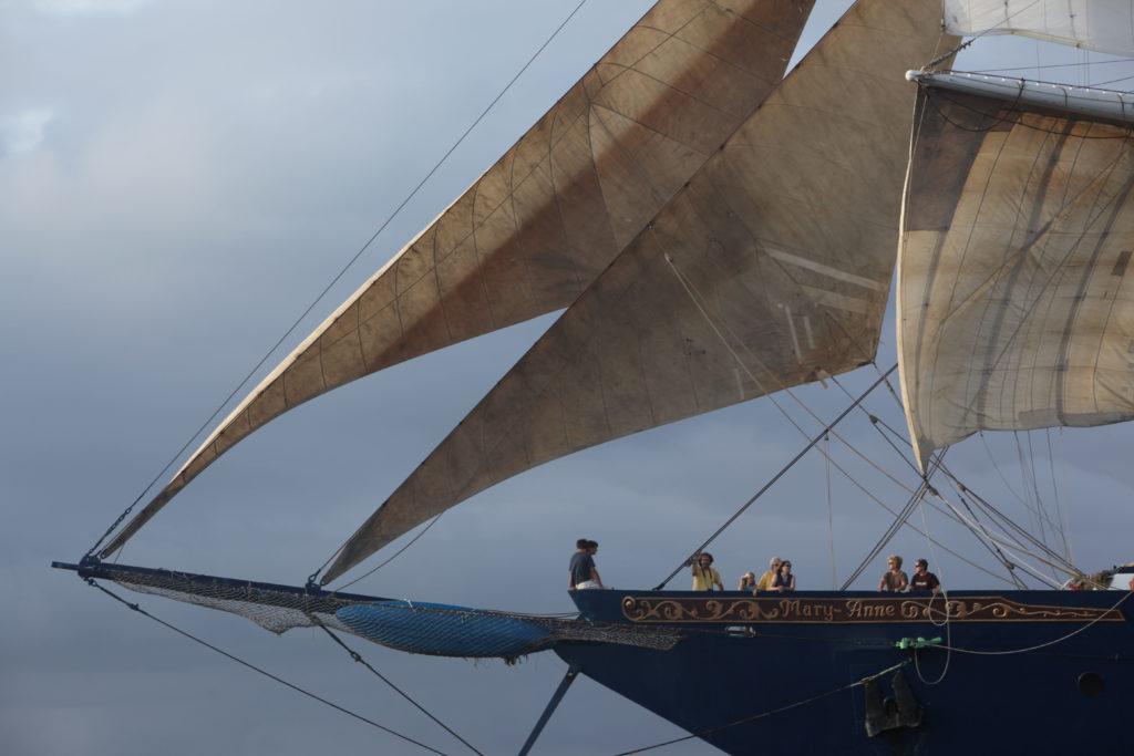 SHIP (1)