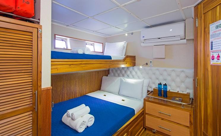 cabin TIP-TOP-III-19