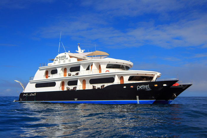 petrel-cruise-1