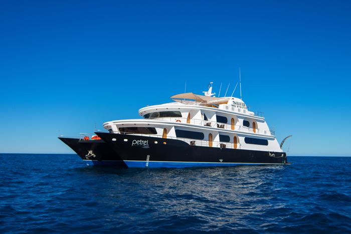 petrel-cruise-5