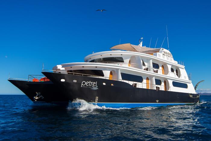 petrel-cruise-6