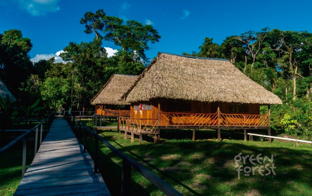 green-forest-ecolodge