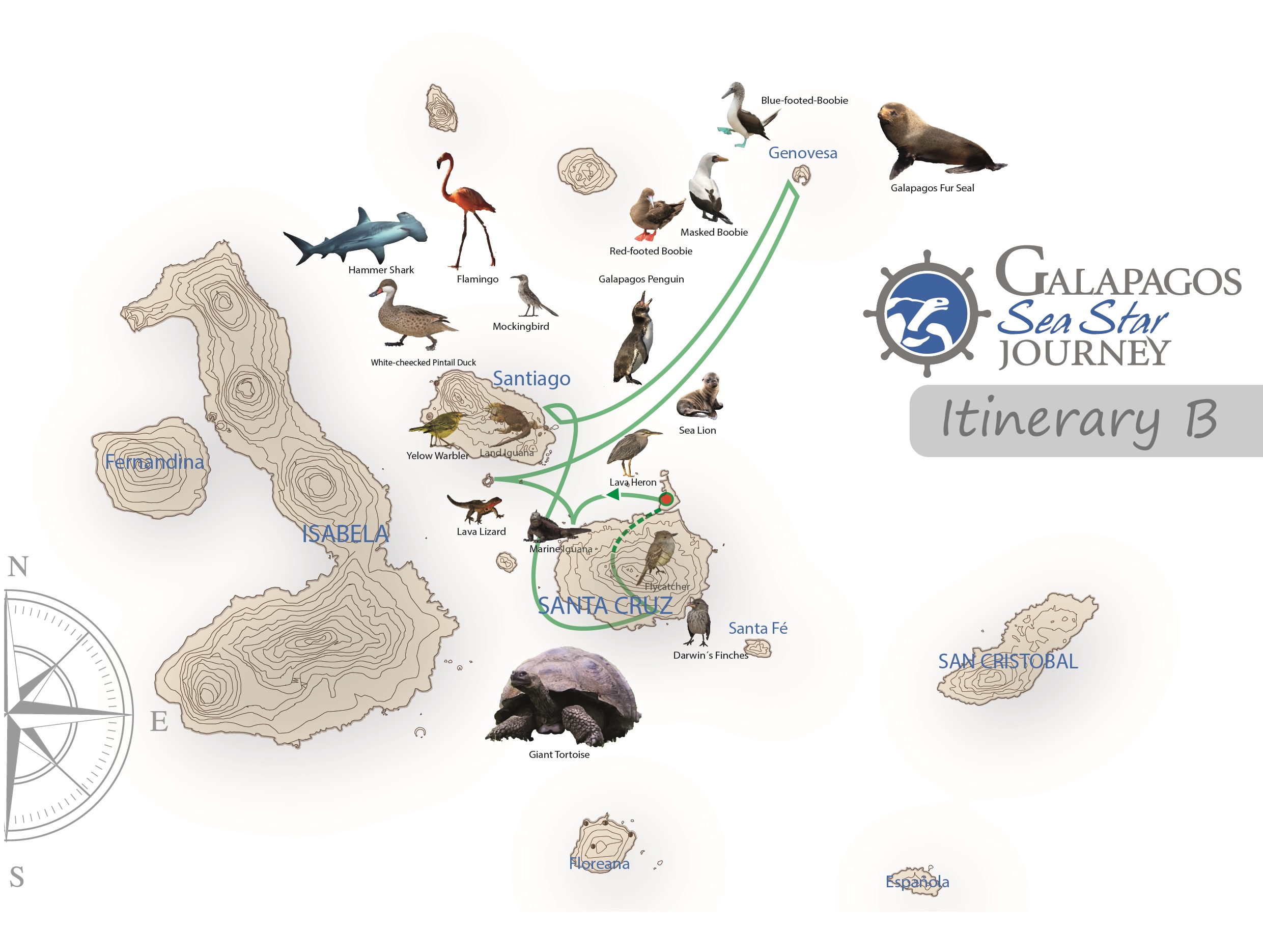 Itinerary B - Sea Star Journey - Wildlife Map