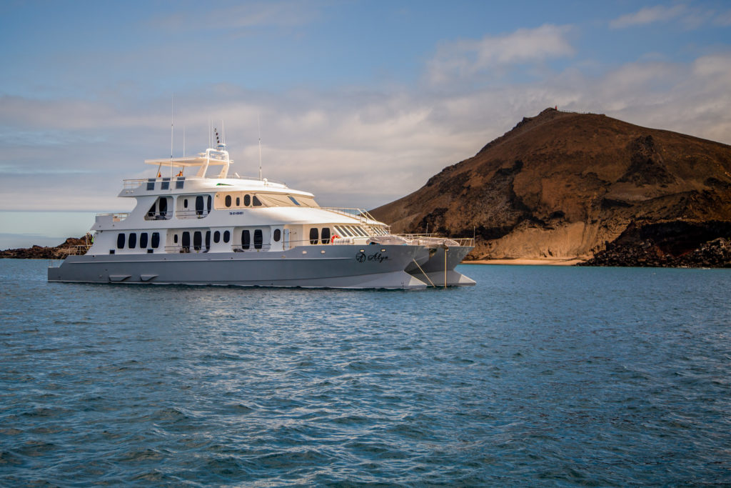 Alya Galapagos Luxury