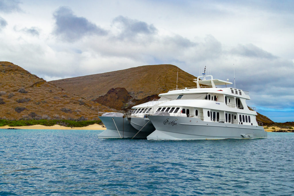 Best Galapagos Catamaran