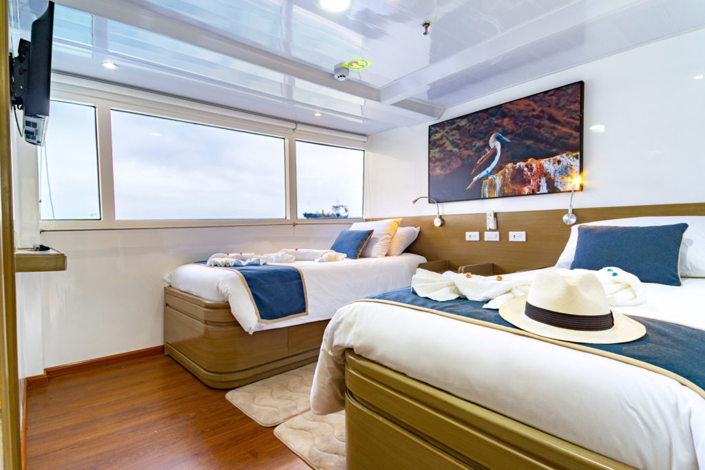 Calipso-twin-cabin-1